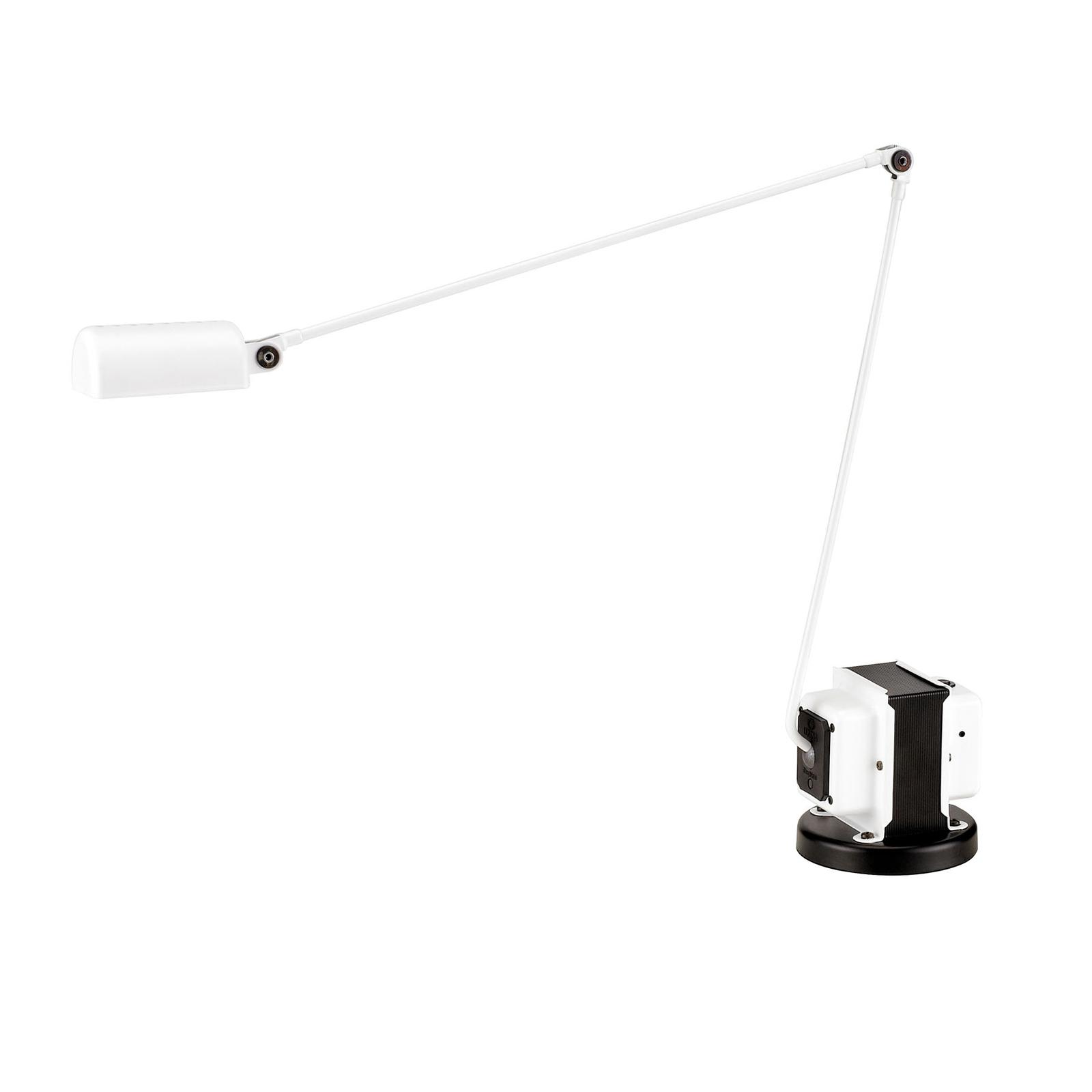 Lumina Daphine -LED-pöytälamppu, valkoinen