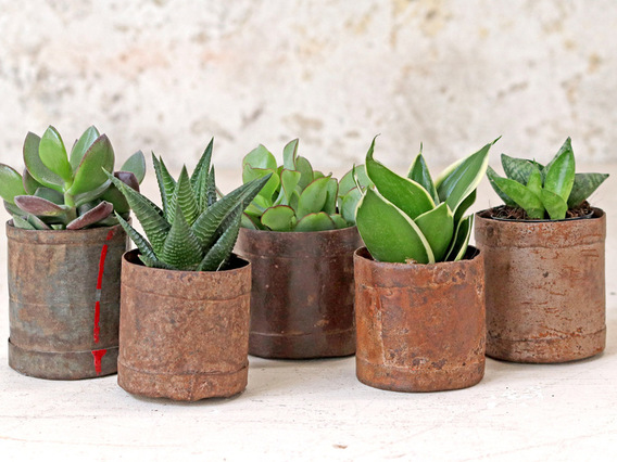 Vintage Metal Pots - Small (Set of 3) Brown