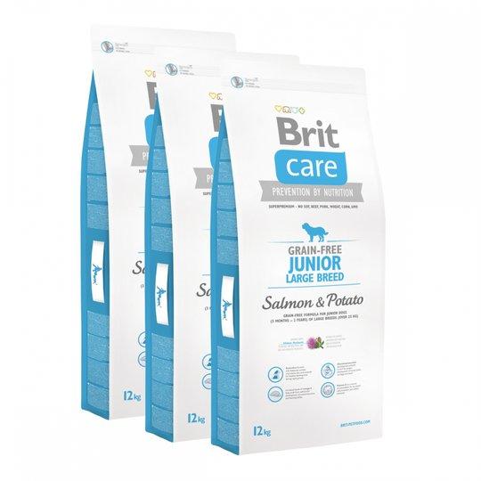 Brit Care Dog Junior Grain Free Large Breed Salmon & Potato 3x12 kg