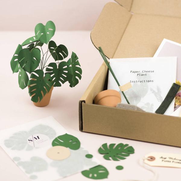 Mini Monstera Plant Paper Craft Kit