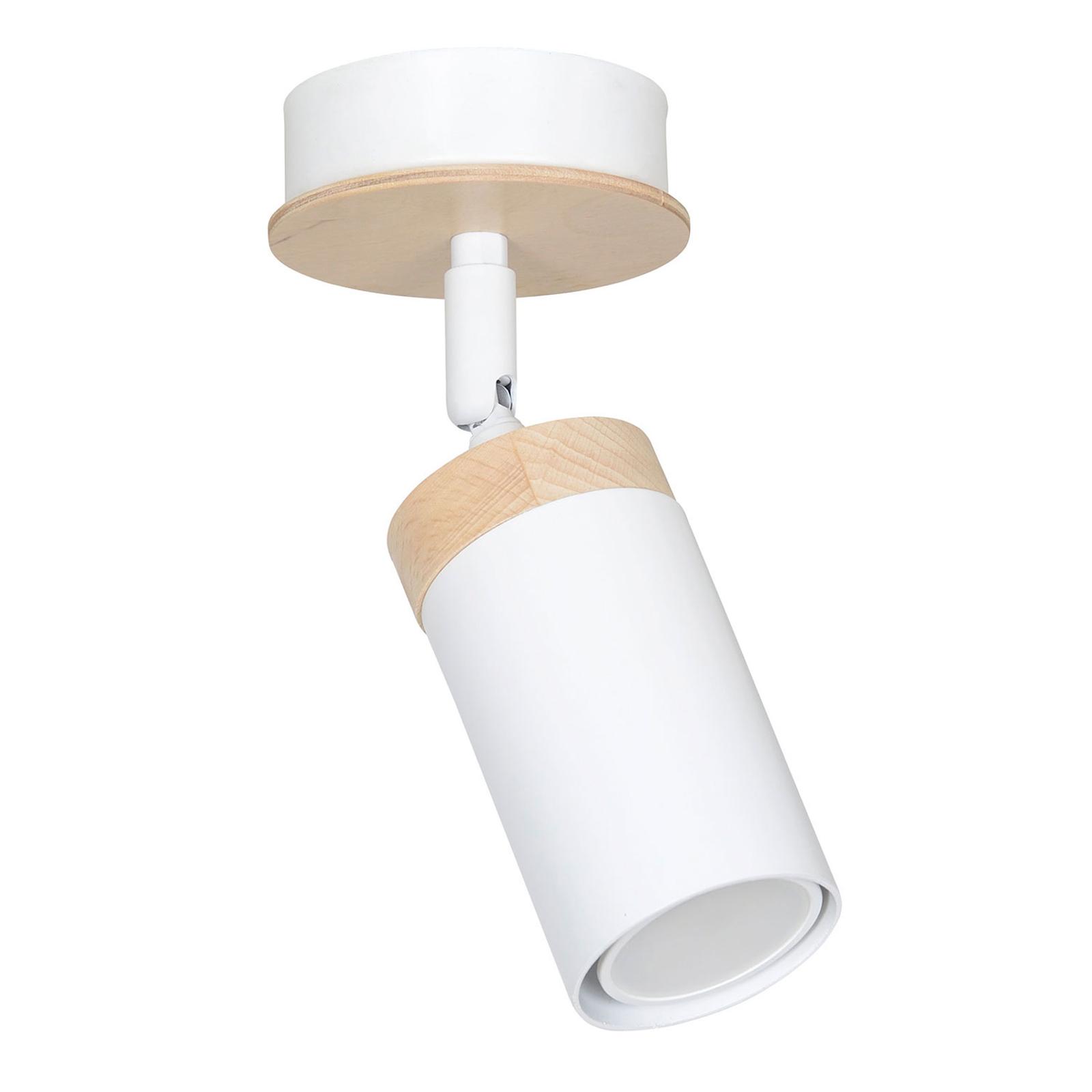 Kattokohdevalo Elba, 1-lamppuinen, valkoinen