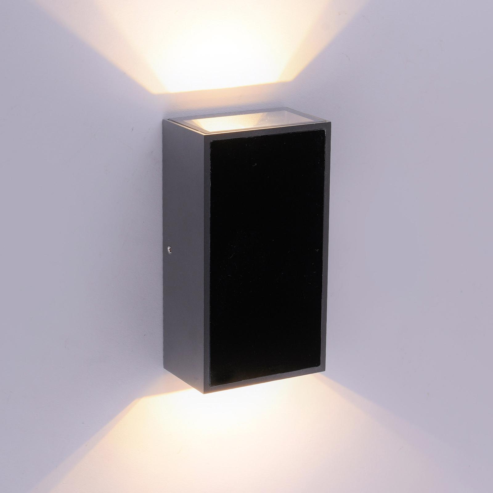 Paul Neuhaus Q-DARWIN LED-ulkoseinävalaisin