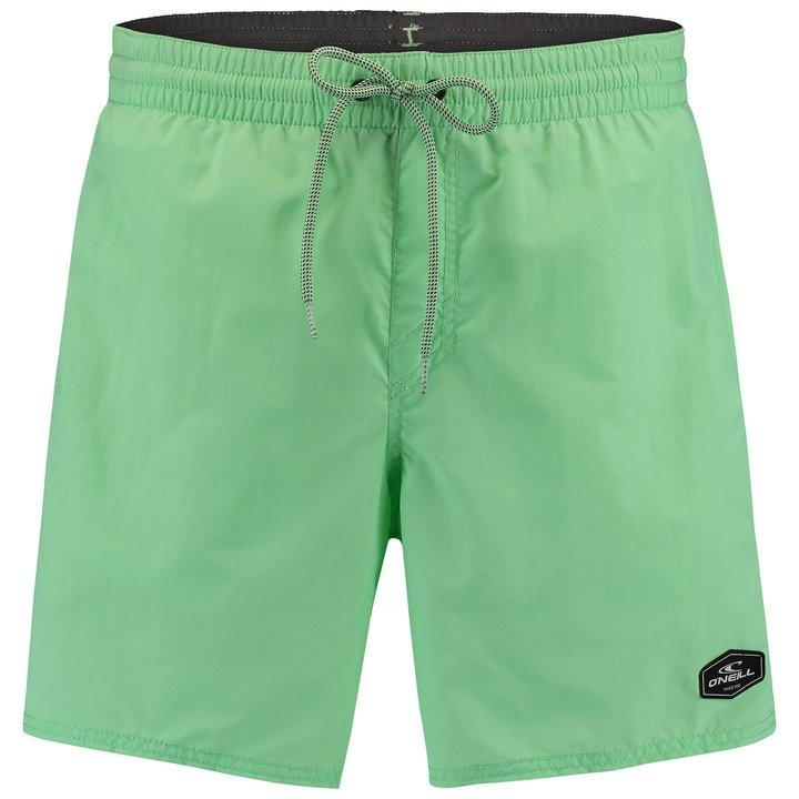 O'Neill Men's PM VERT Shorts Various Colours 8719403646280 - S Neon Mint