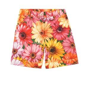 Dolce & Gabbana Gerbera Floral Shorts Orange 6 år