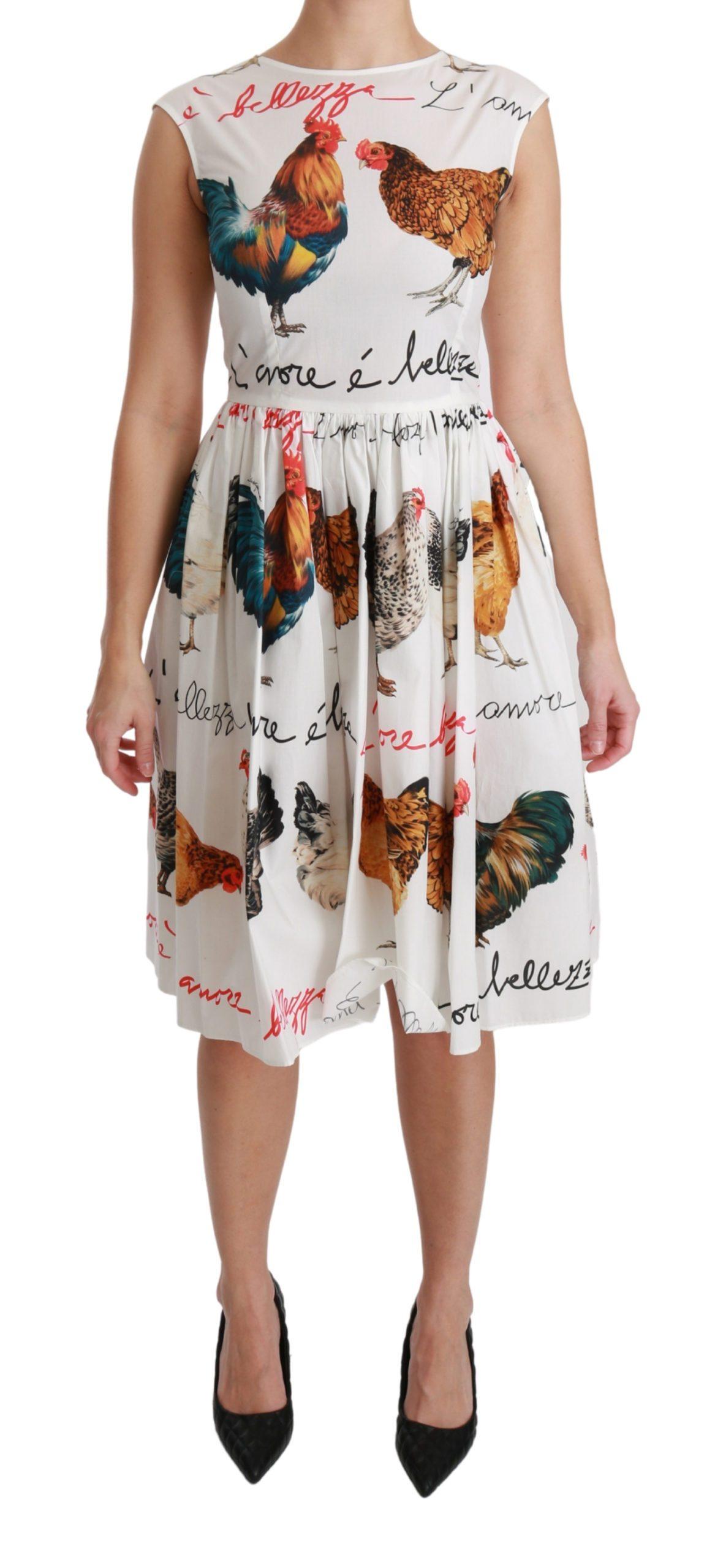Dolce & Gabbana Women's Rooster A-Line Mini Cotton Dress White DR2525 - IT36   XS