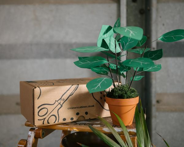 At Home: Your Paper Jungle