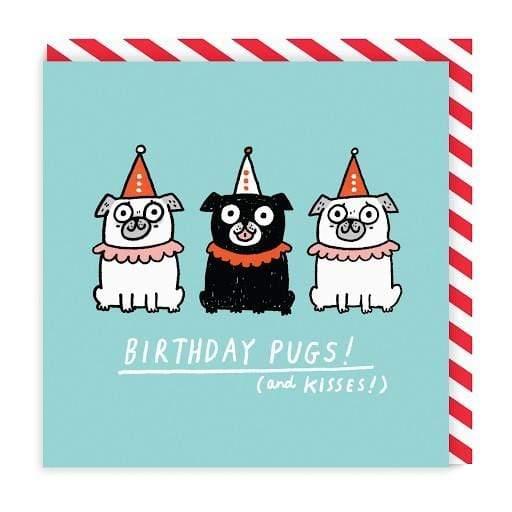 Birthday Pugs Square Greeting Card