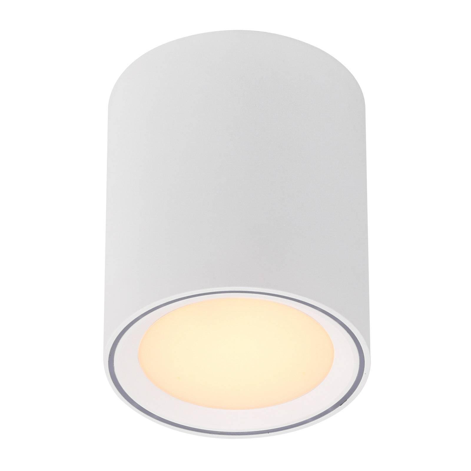 Fallon-LED-kattovalaisin, korkeus 12 cm
