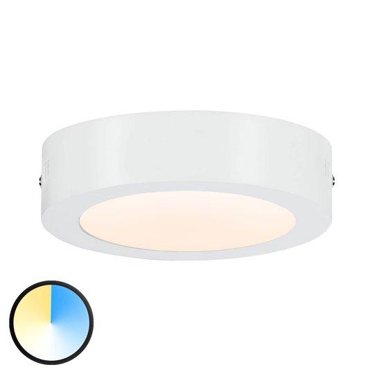 Paulmann Carpo -LED-kattovalaisin pyöreä 17cm