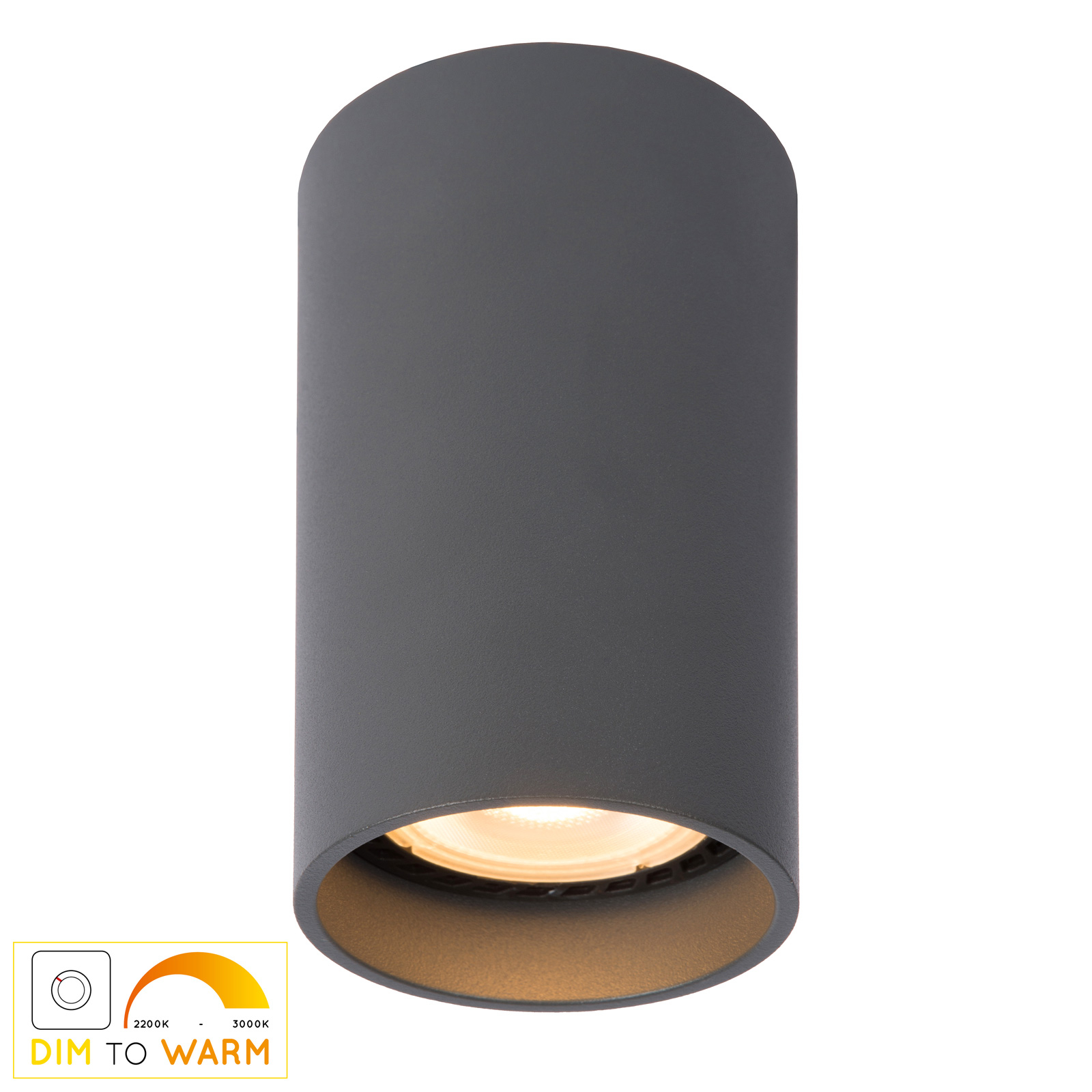 LED-kattovalaisin Delto, pyöreä, harmaa
