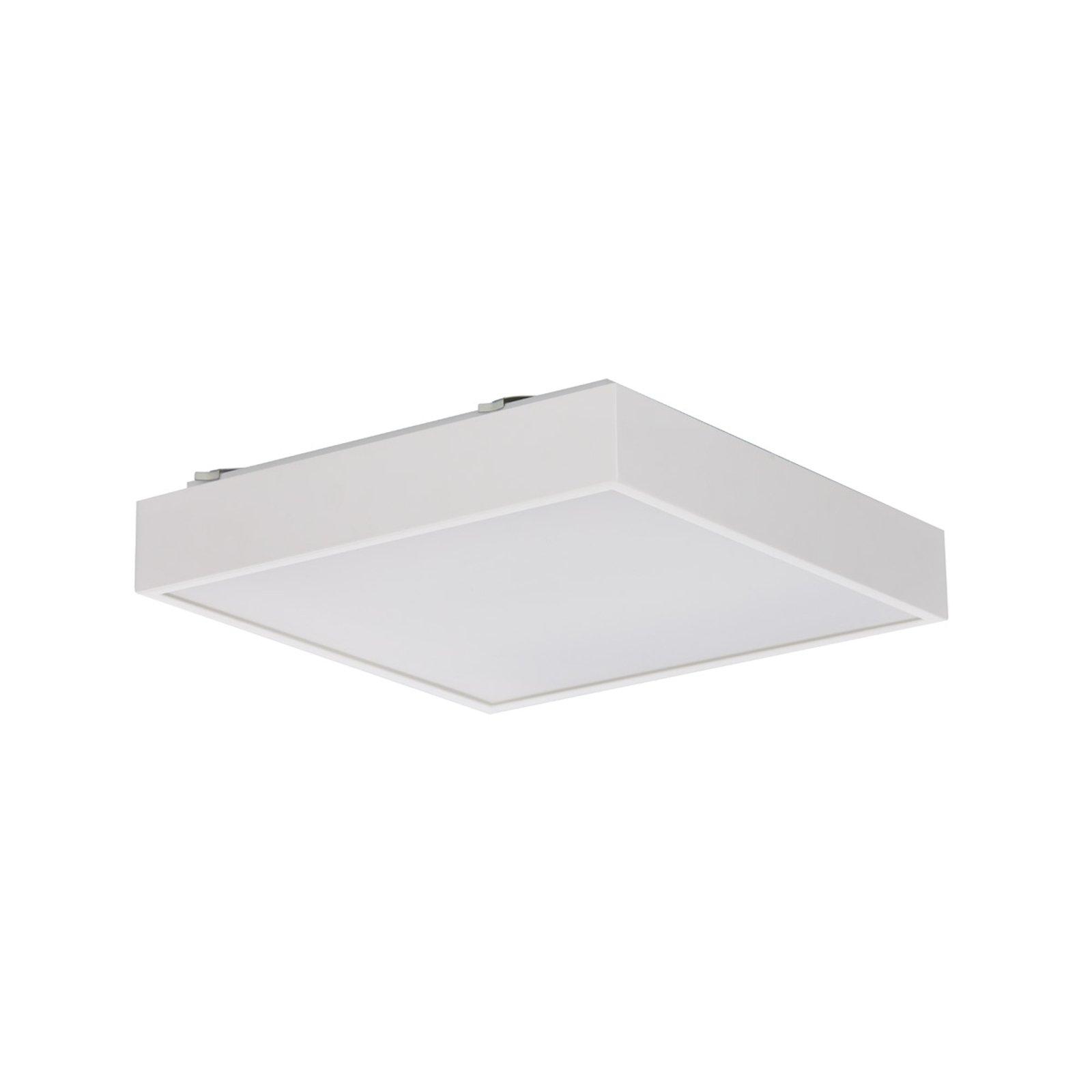 Q4 - LED-taklampe i hvitt DALI