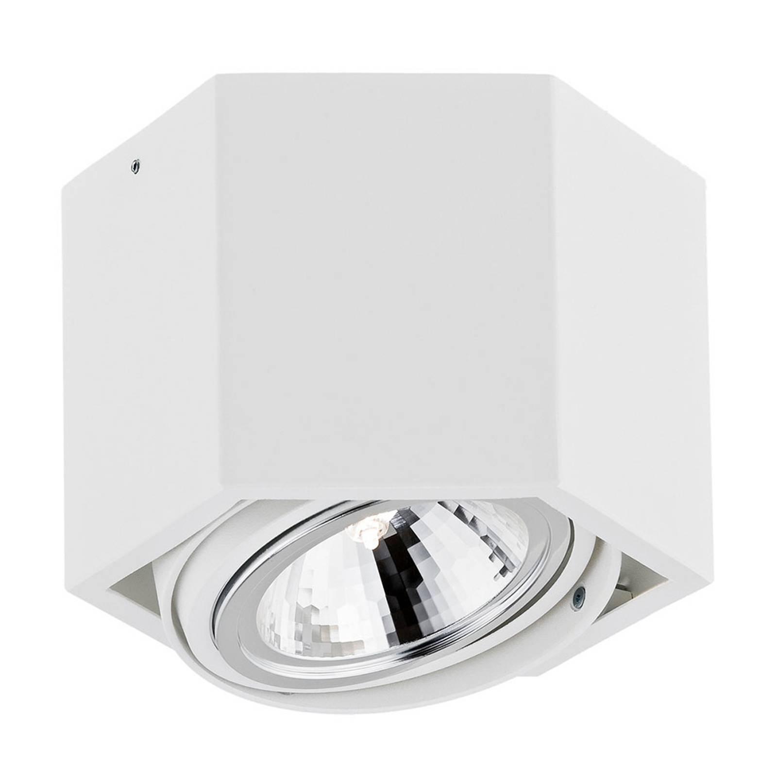 Kattospotti Elvas, kääntyvä 1-lamppuinen valkoinen