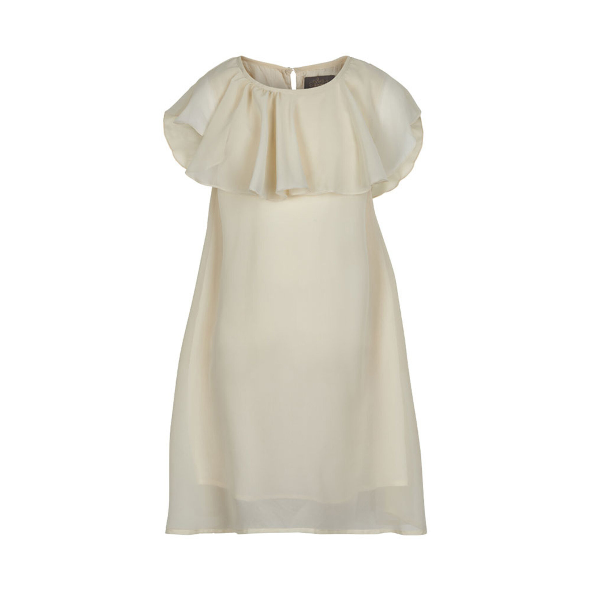 Dress Chiffon