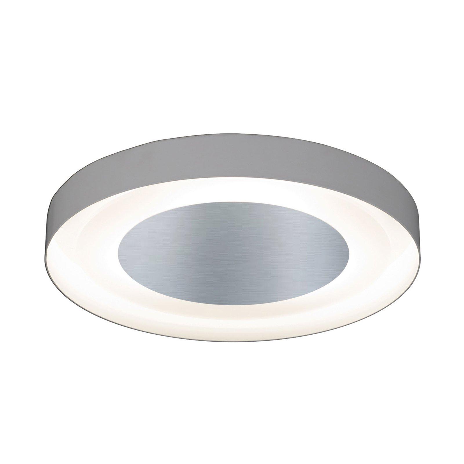 3560/3PL taklampe, bladsølv, Ø 40cm