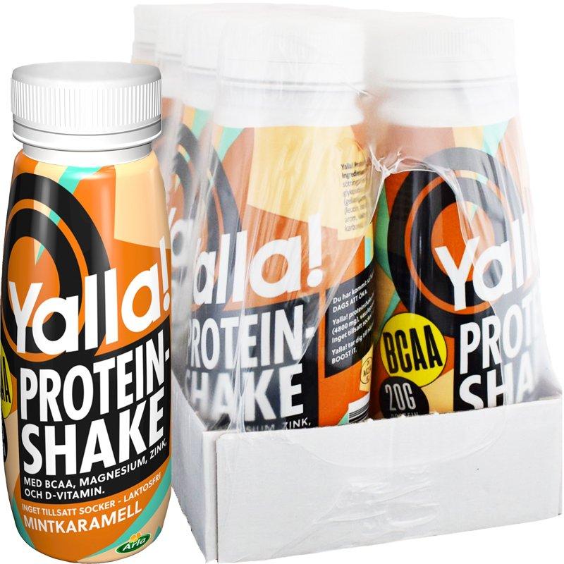 Proteinshake BCAA Mintkaramell 8-pack - 50% rabatt
