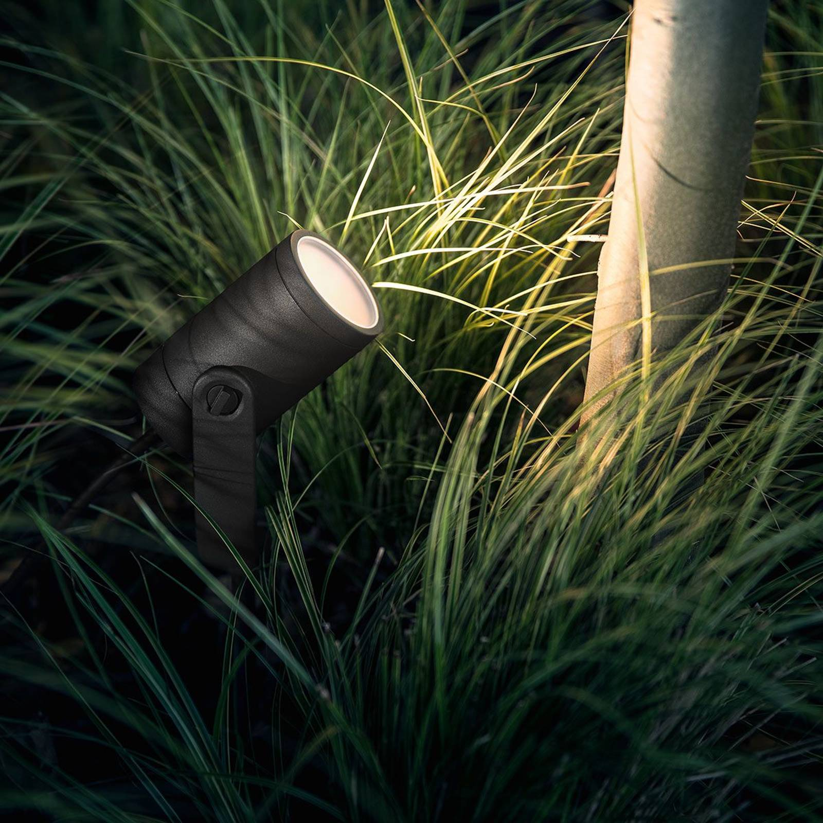 Philips Hue -LED-spotti Lily, ohjaus sovelluksella