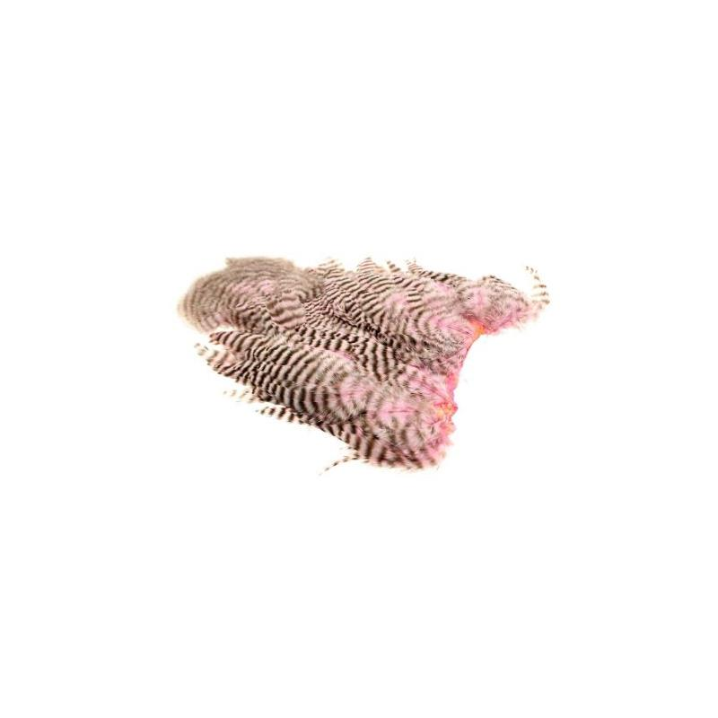 Whiting 4B Hen Soft Hackle/Chicabou Grizzly Shell Pink