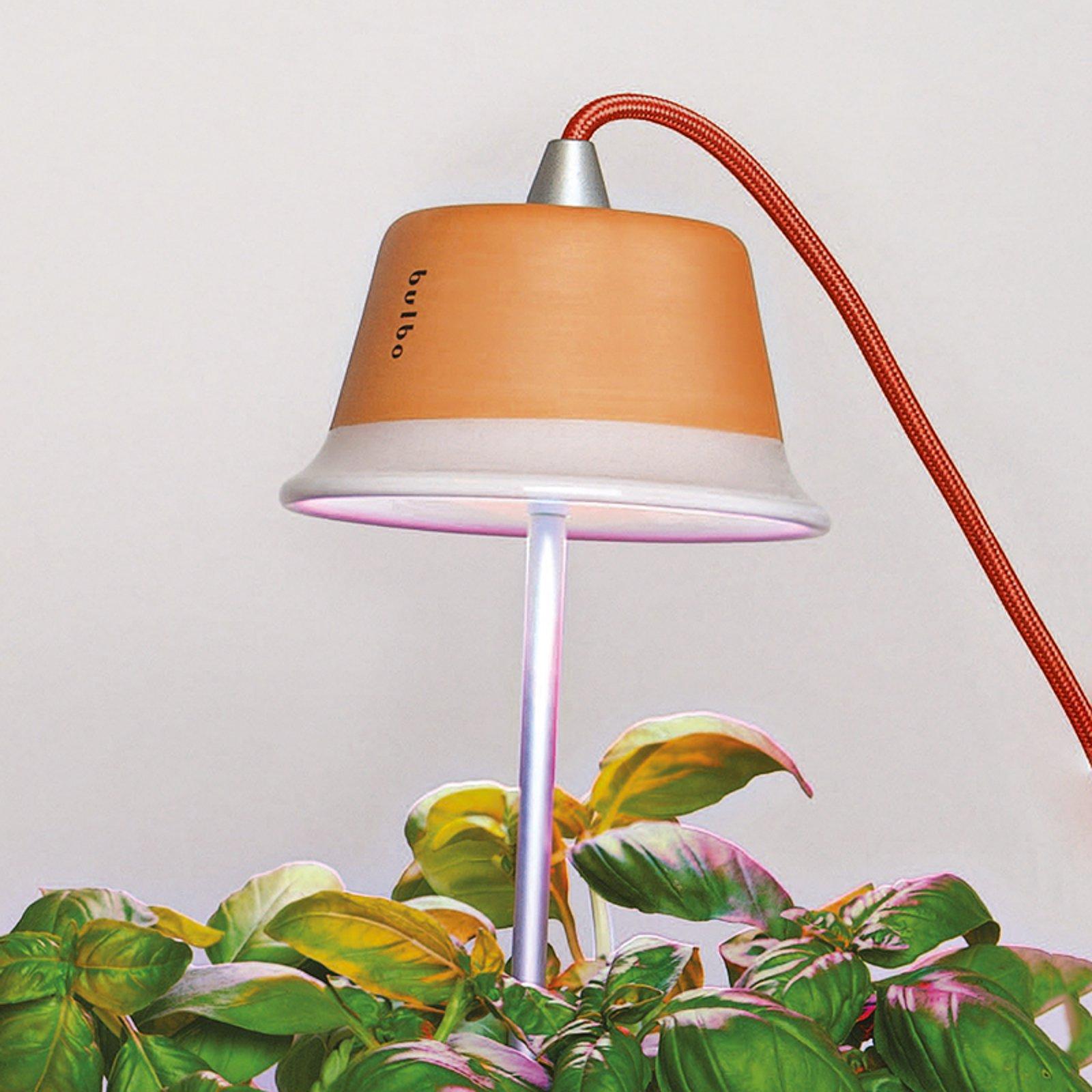 Chlorophyll plantelampe for innendørs planter