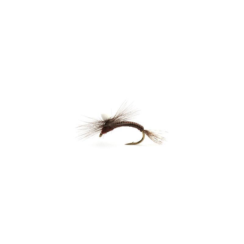 Leptoklekker #14 Kjøp 12 fluer få gratis flueboks