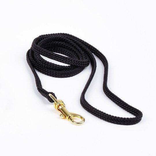 Show Dog Show Lead med guldfärgat lås, svart (5 mm)