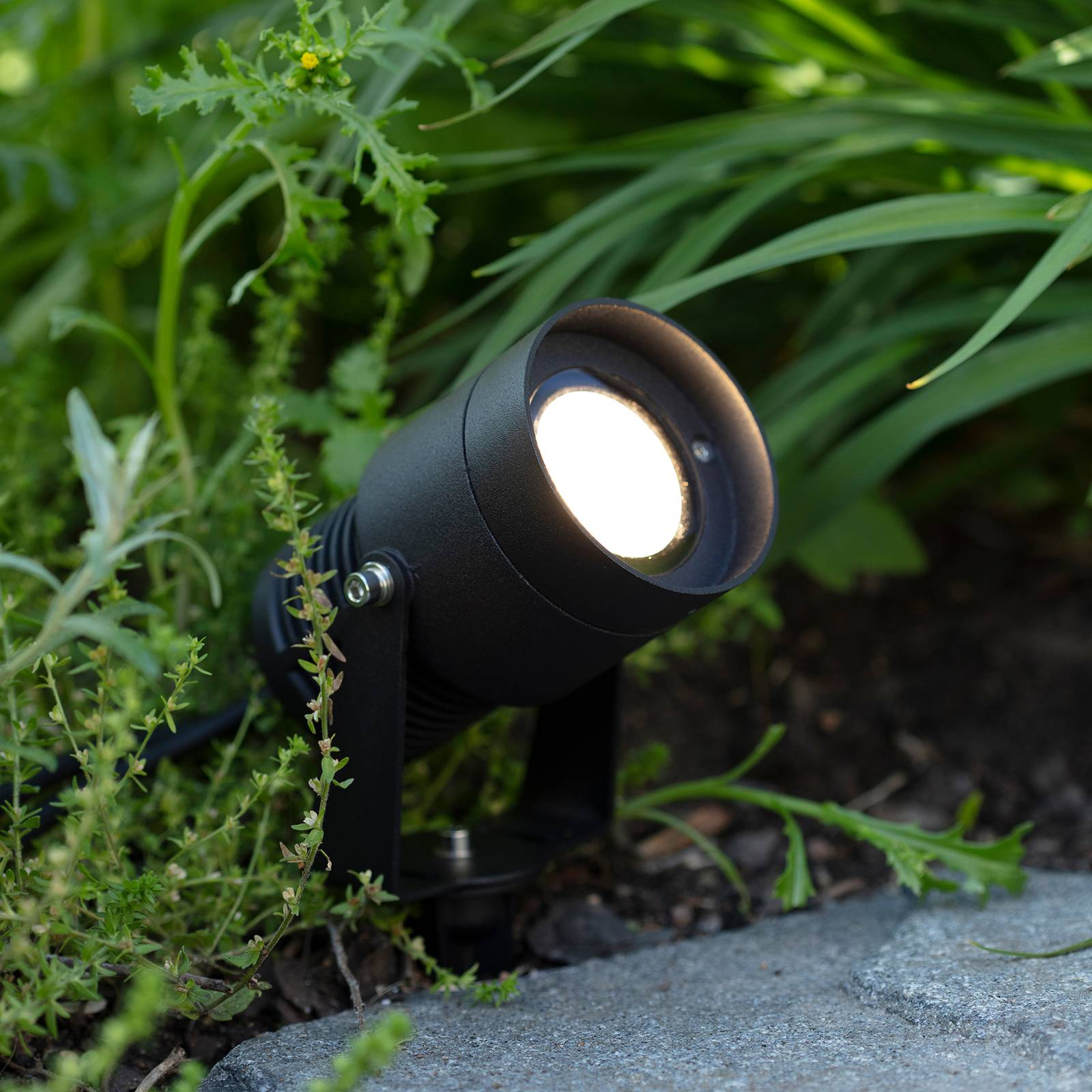 Garden 24 -LED-kohdevalo, musta, 15 W