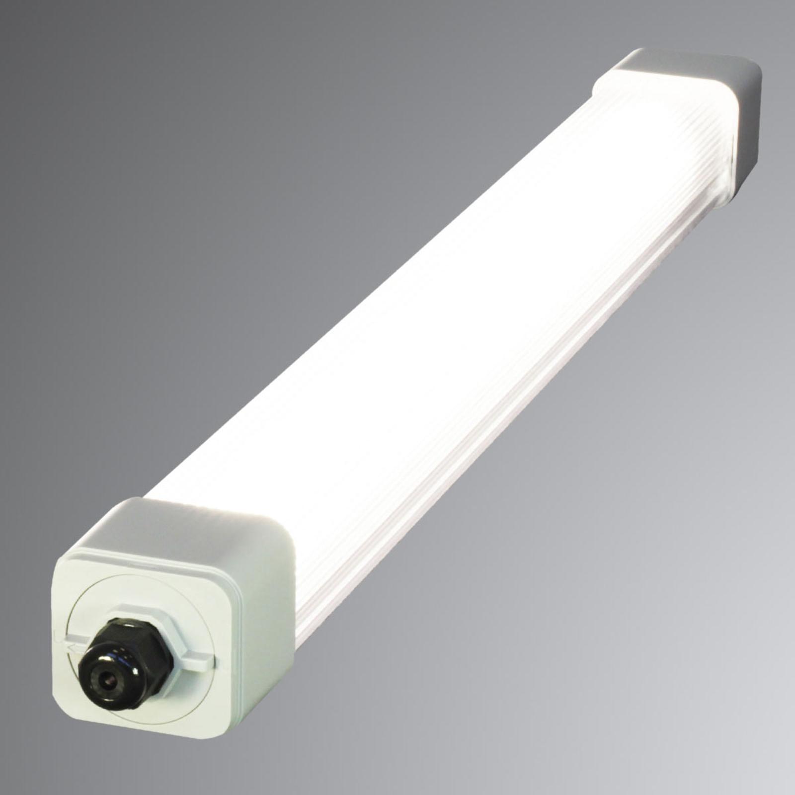 Kosteiden tilojen LED-lamppu Dino 2, 67,2cm, 19,5W