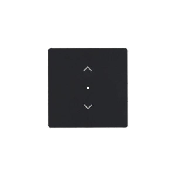 ABB Free@home 6220-0-0143 Yksiosainen vipupainike yksipäinen Antrasiitti