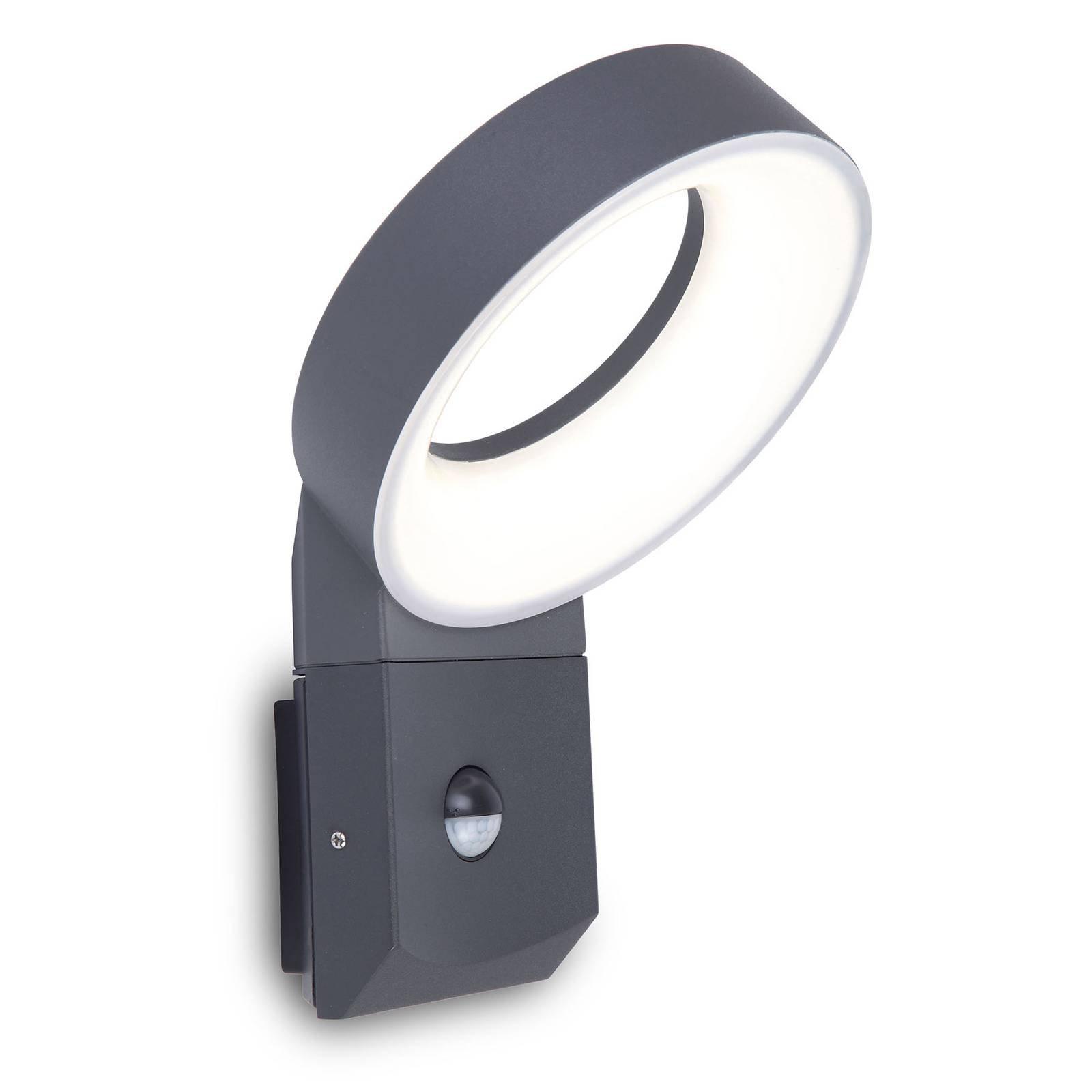 LED-utevegglampe Meridian med bevegelsessensor