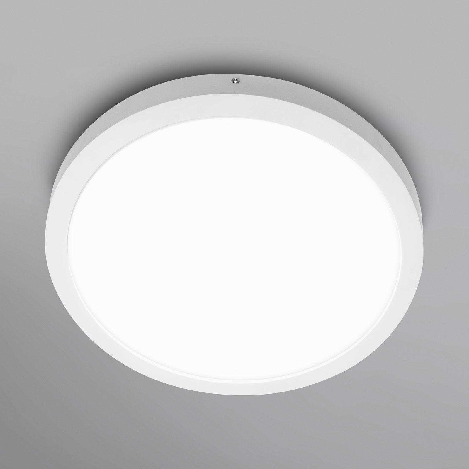 LEDVANCE Planon Round -LED-seinävalo 40cm 840