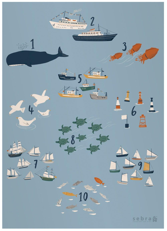 Sebra Juliste Numbers Seven Seas