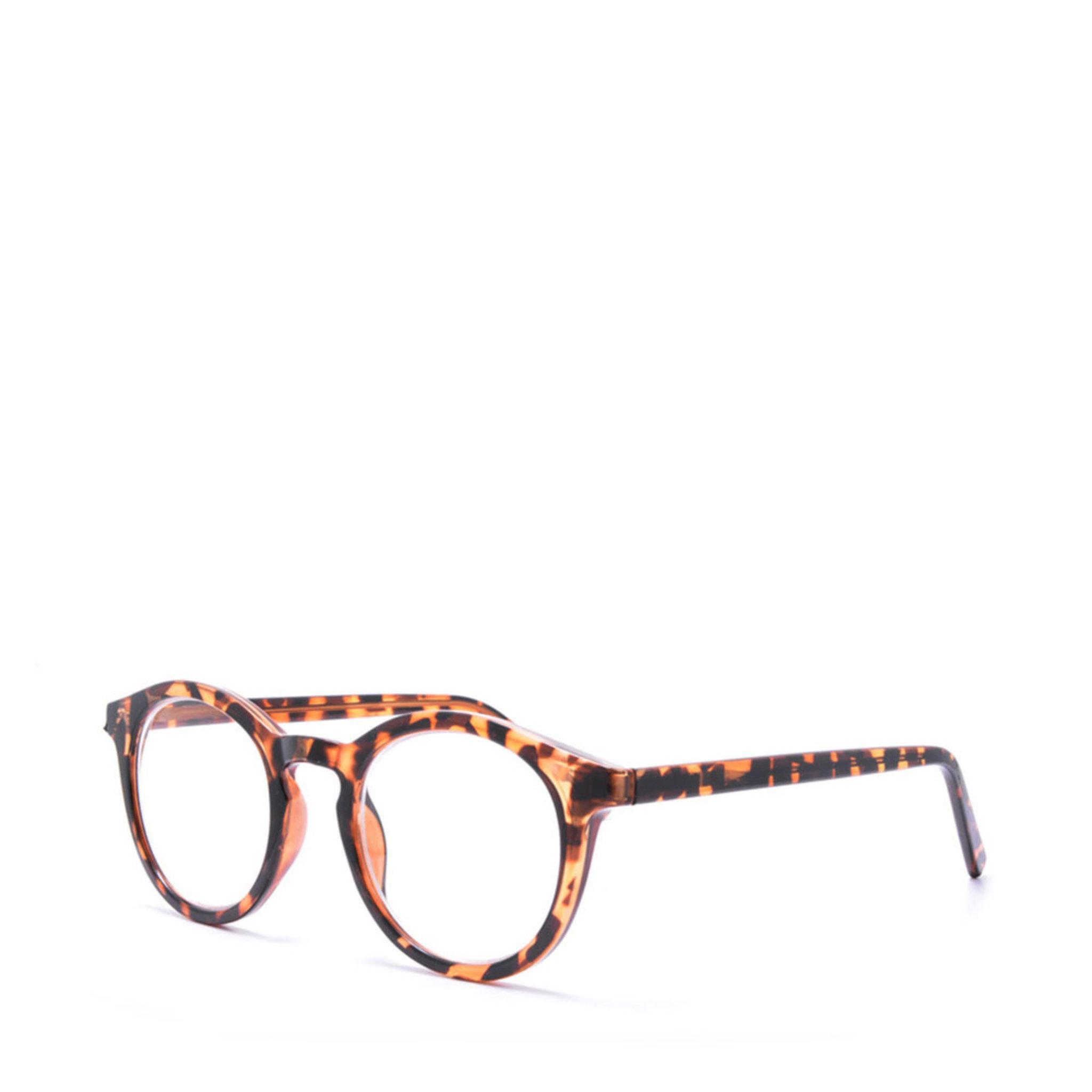Progressiva läsglasögon +0,0-1,0