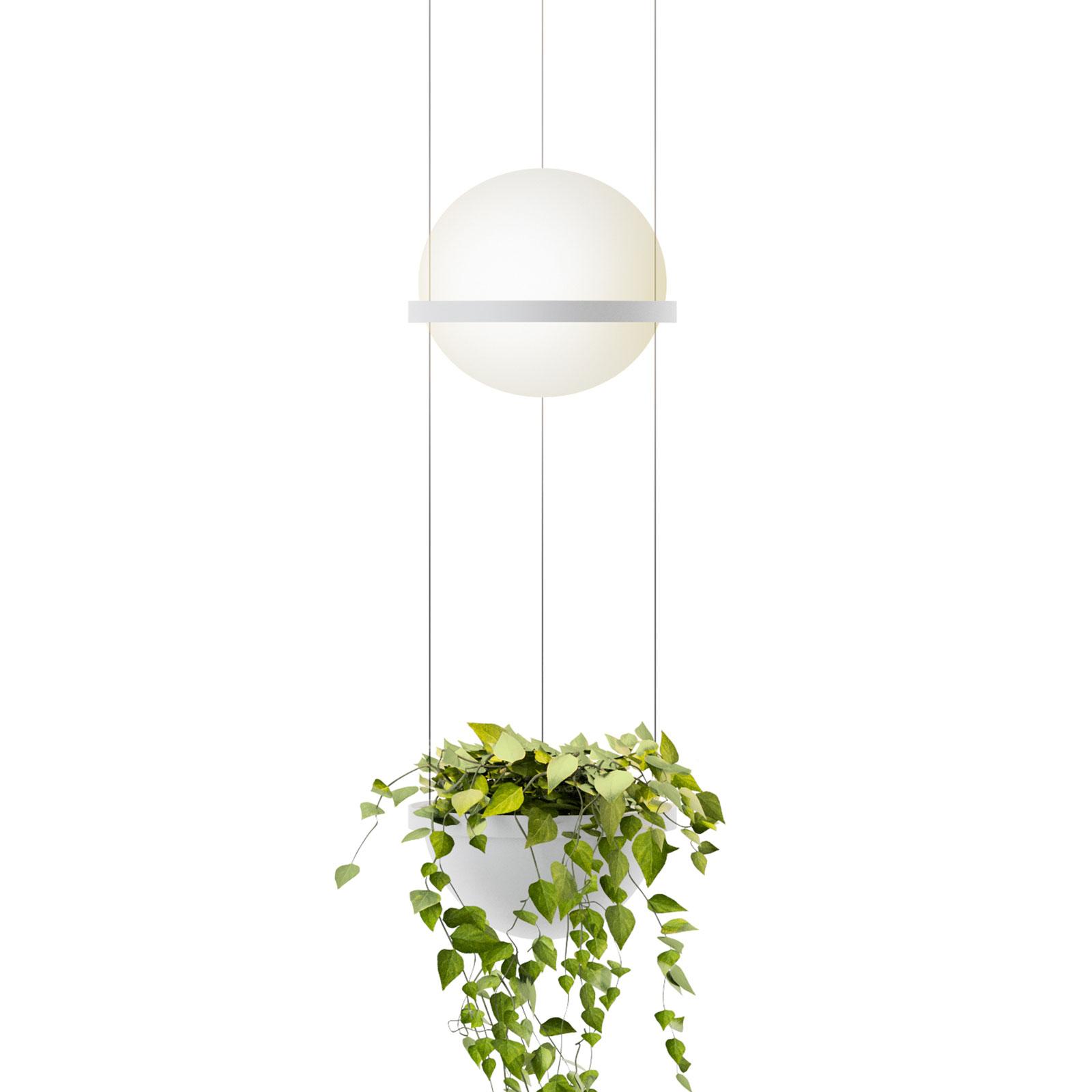 Vibia Palma 3724 riippuvalo kasvinkuori valkoinen