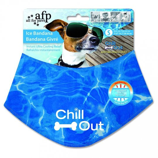 All For Paws Chill Out Ice Bandana (S)
