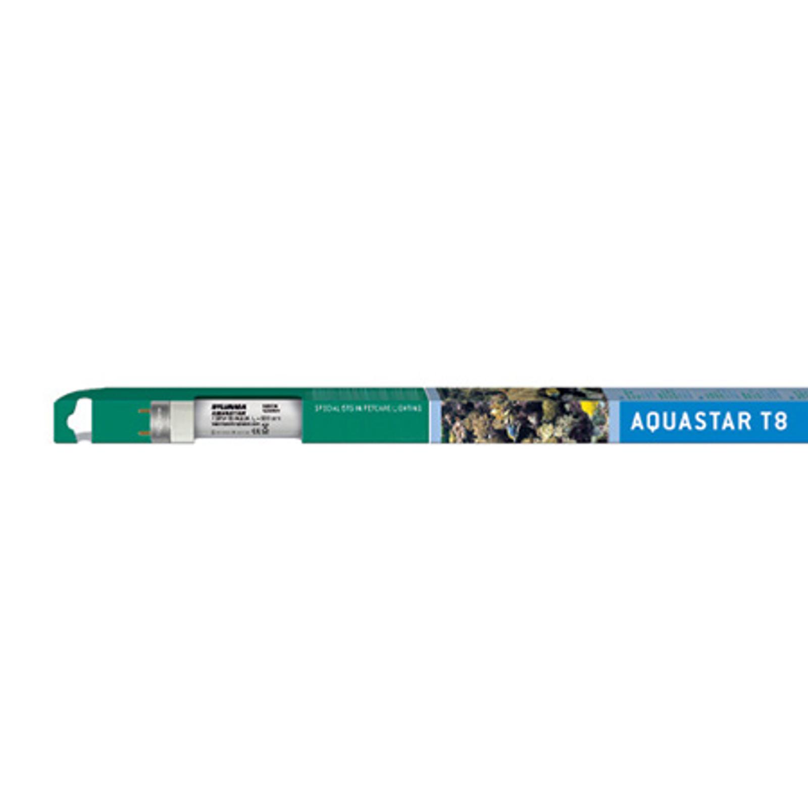 G13 T8 25 W Aquastar-päivänvalolamppu