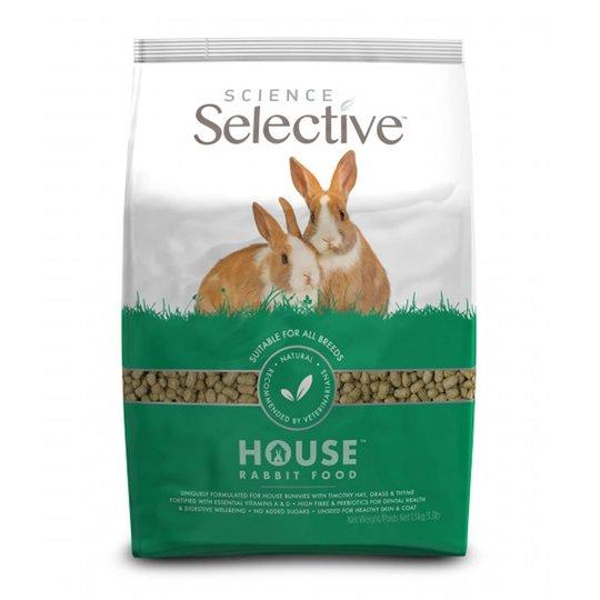 Selective House Rabbit