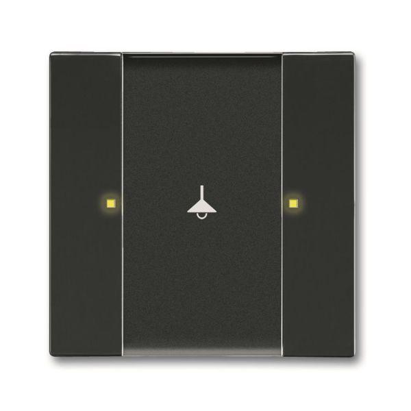 ABB Impressivo 6115-0-0216 Painike 2 ohjauspistettä Antrasiittiharmaa