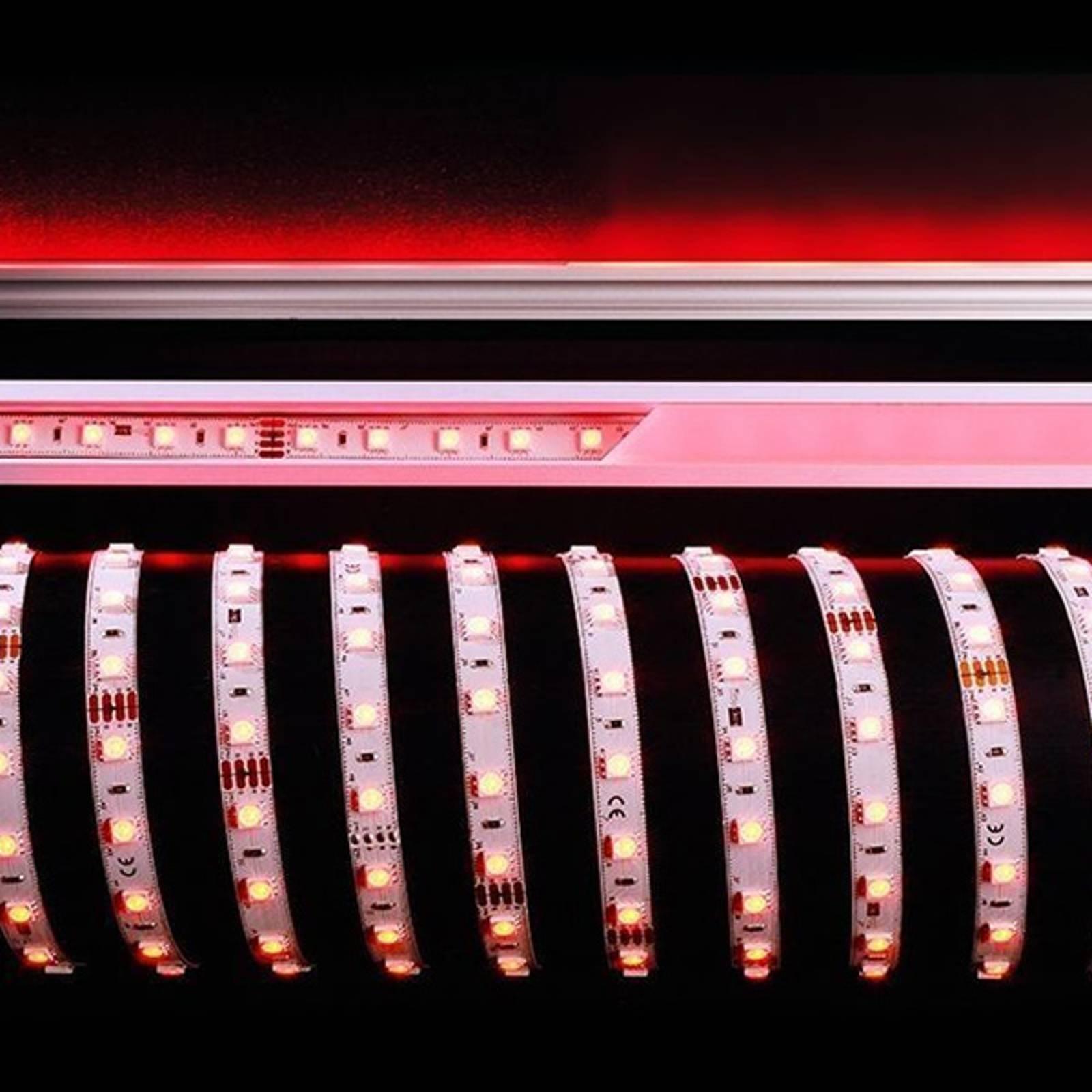 Fleksibel LED-stripe 484 nm 60 W 500x1x0,3 cm