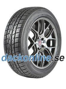 Delinte AW5 ( 205/55 R16 91V )