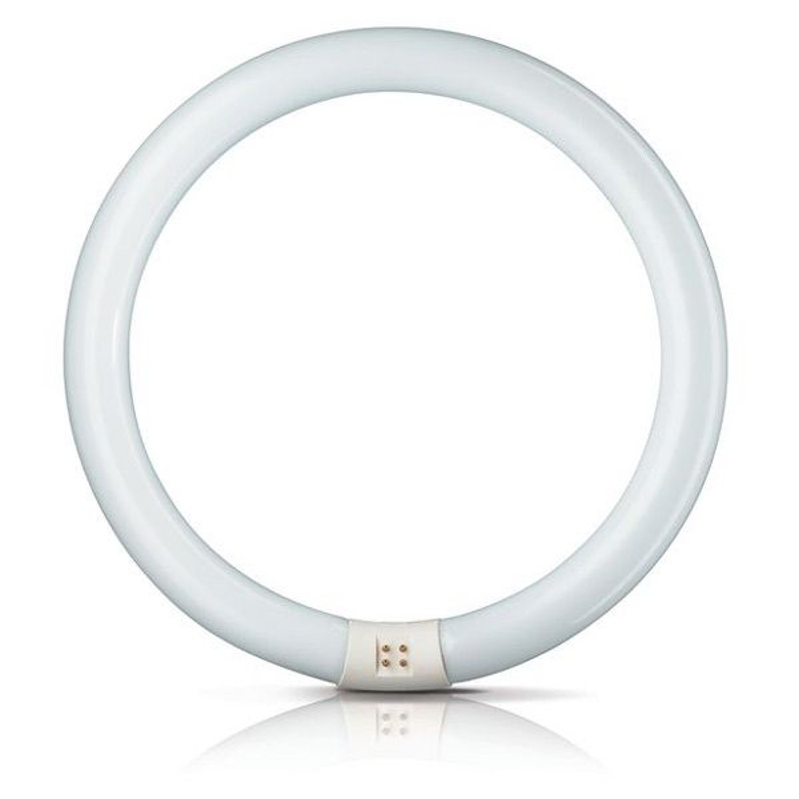 G10q 22W 865 lysstoffring Master Circular TL-E