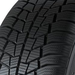 Gislaved Euro*Frost 6 ( 195/65 R15 91T )