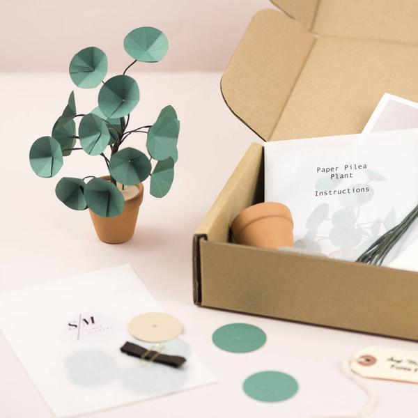 Mini Pilea Plant Paper Craft Kit
