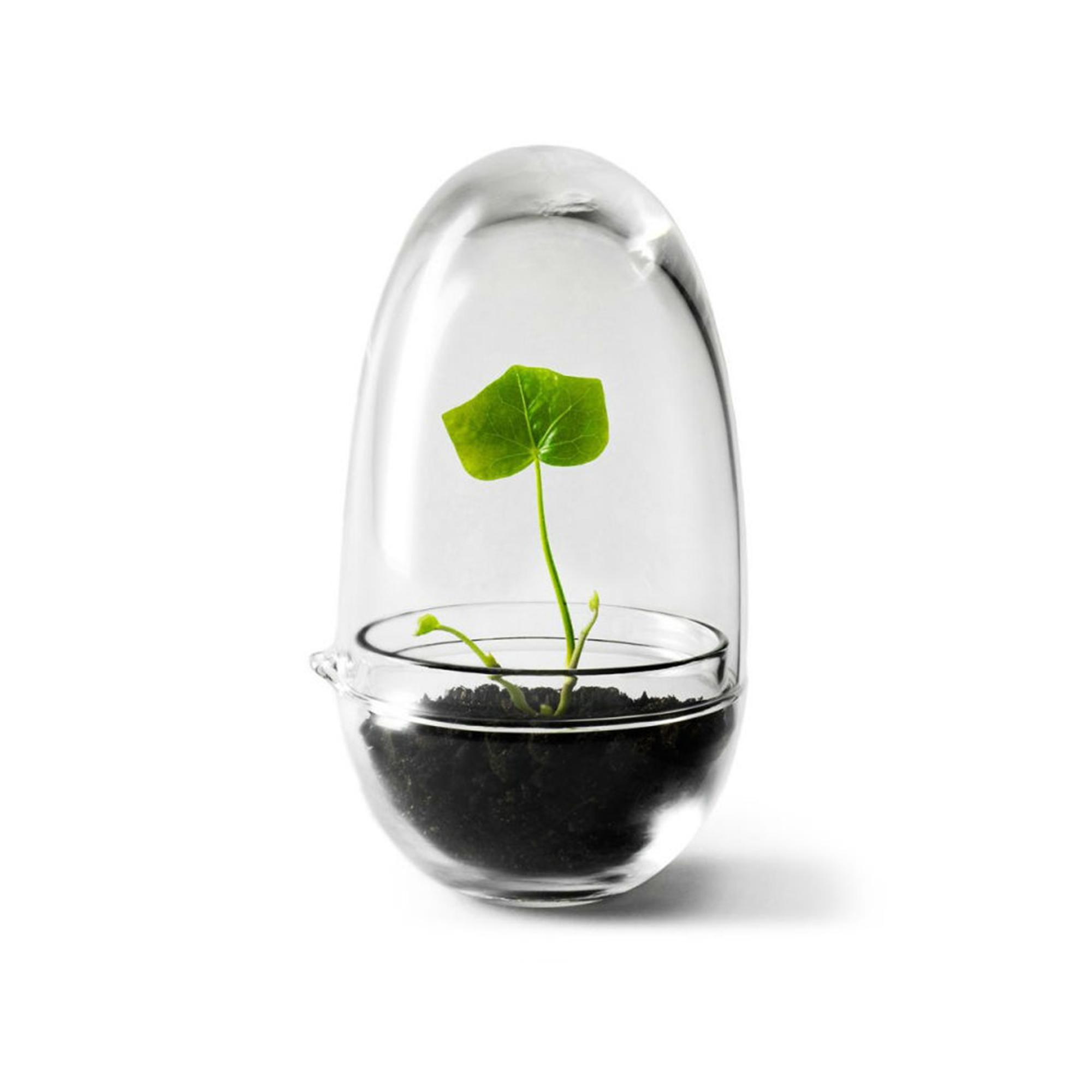 Design House Stockholm Växthus Grow Glas S