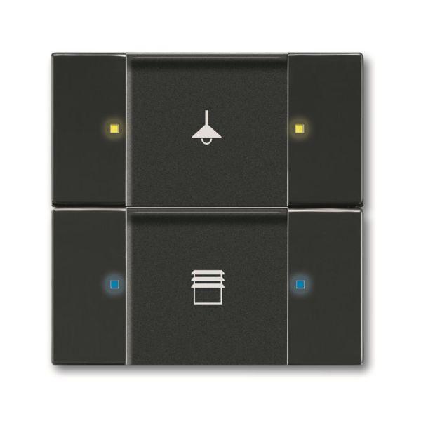 ABB 6116-0-0217 Painike monitoiminen, musta 4 ohjauspistettä