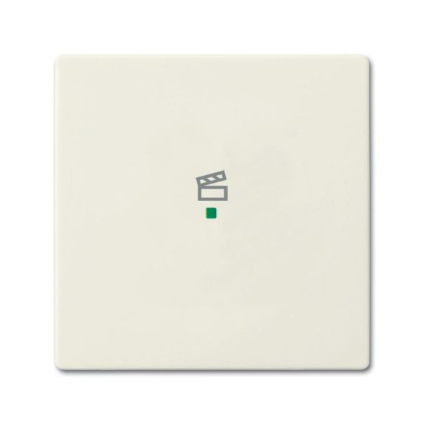 ABB Future Linear 6220-0-0587 Yksiosainen vipupainike tilanneohjaus Chalet-white