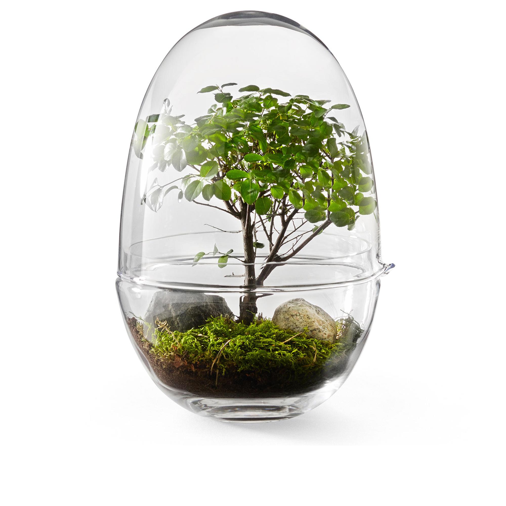 Design House Stockholm Växthus Grow Glas L