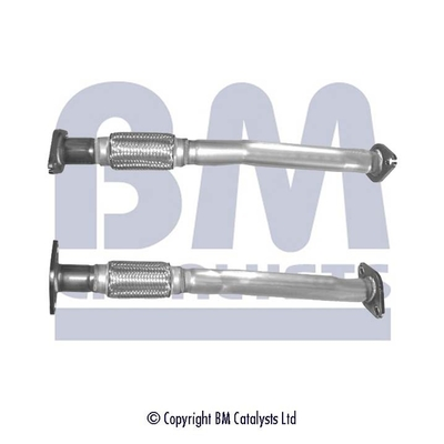 Pakoputki BM CATALYSTS BM50265