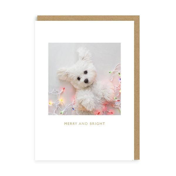 Merry & Bright Puppy Christmas Card
