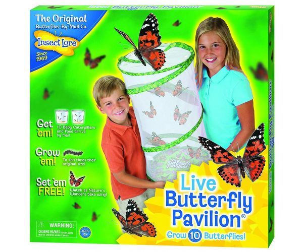 Insect Lore - Butterfly Pavilion (60073)