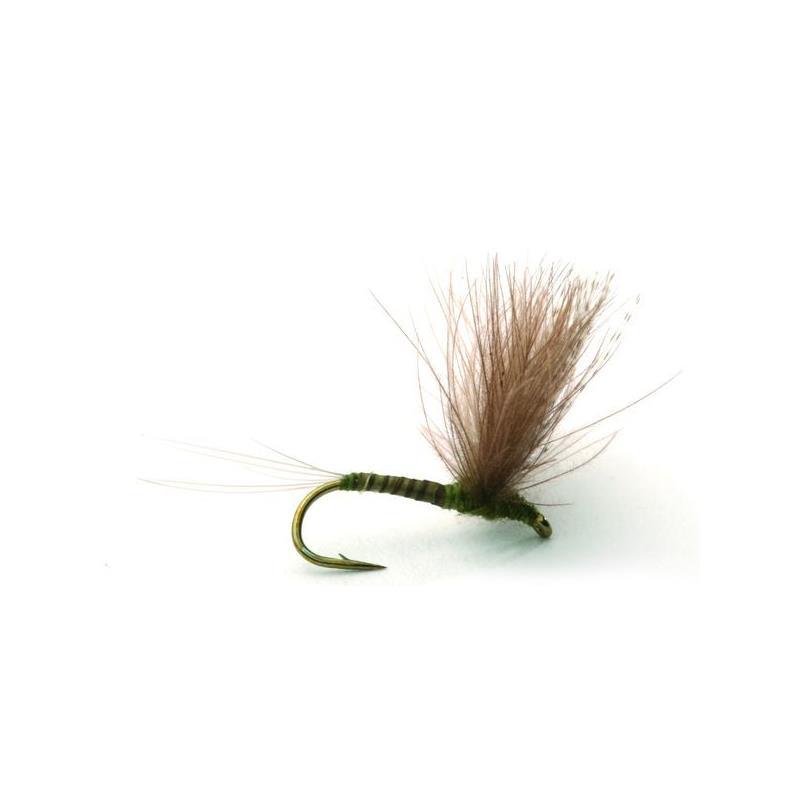 CdC Biot Comparadun Olive #12 Kjøp 12 fluer få gratis flueboks