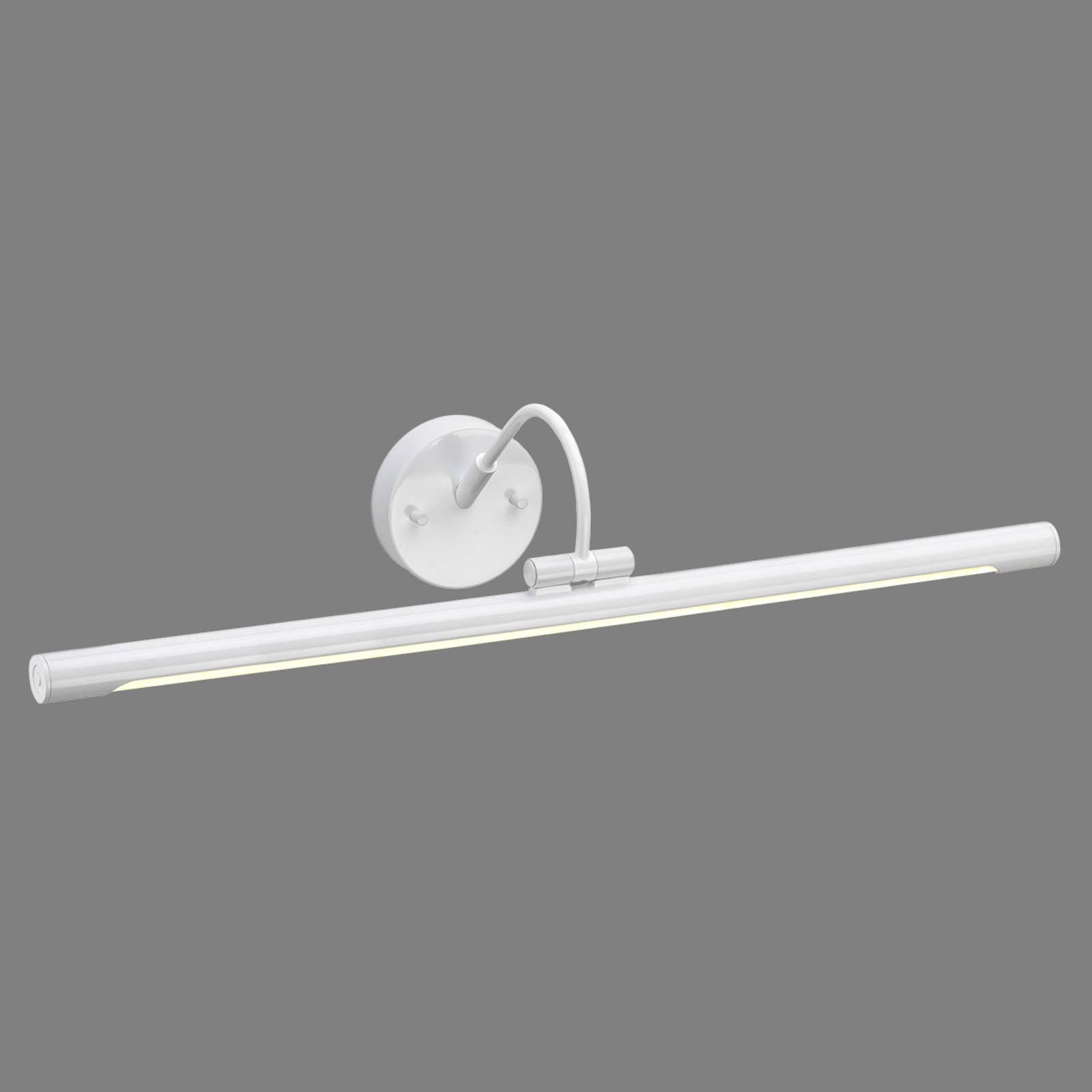 LED-bildelampe Alton, hvit, 67 cm
